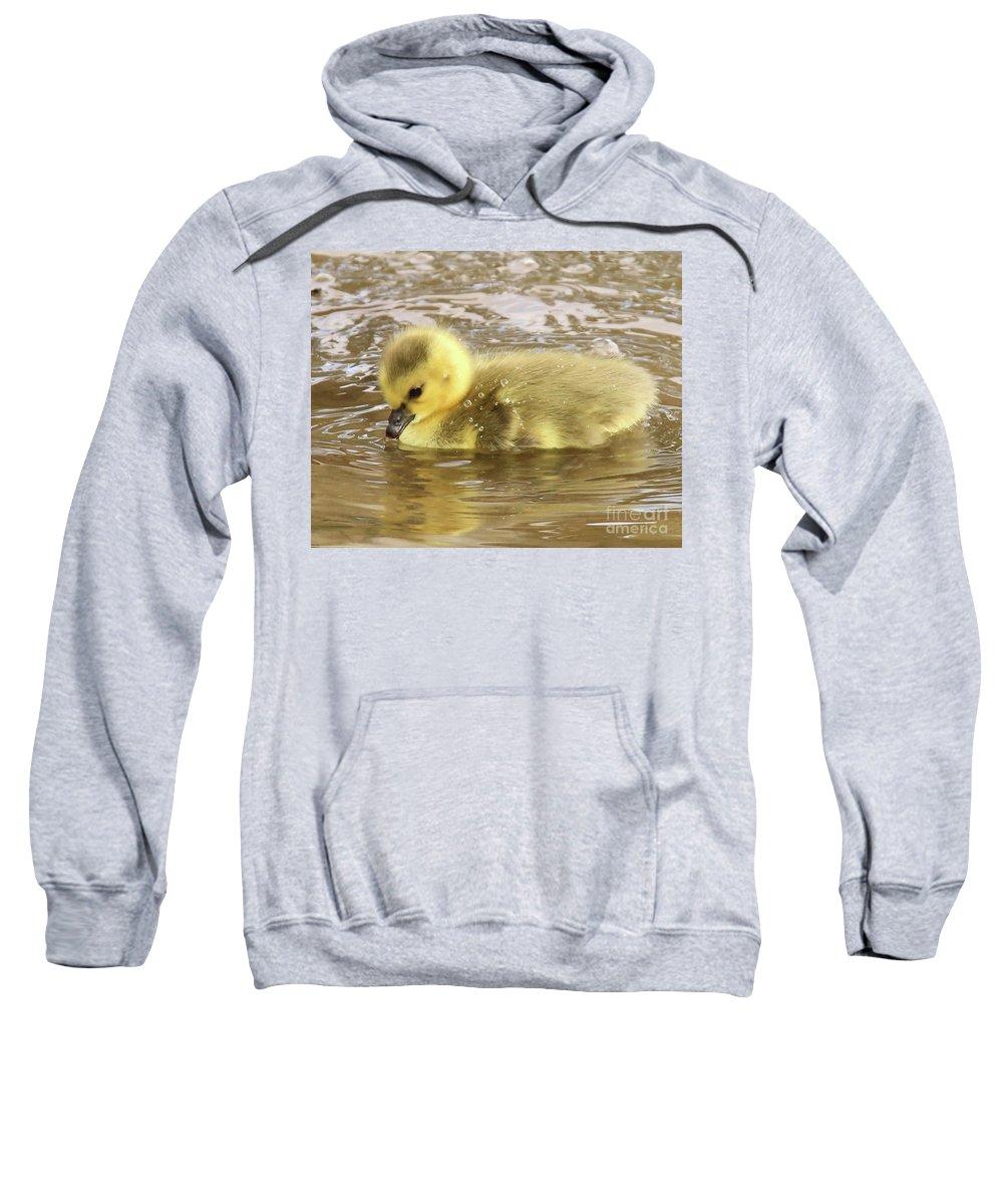 Canada Sweatshirt featuring the photograph Splish Splash by Laurie Pocher