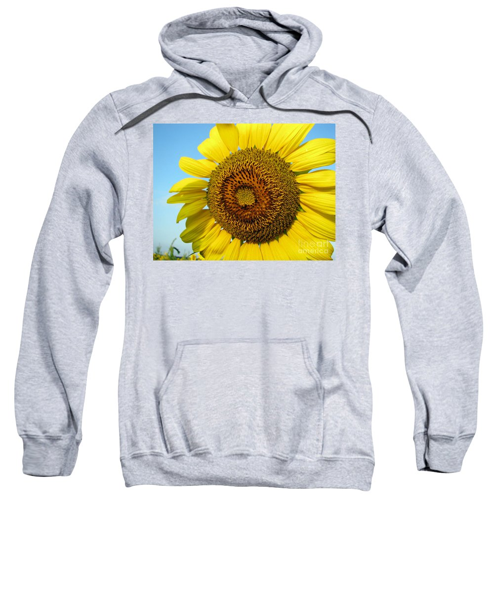 Sunflower Sweatshirt featuring the photograph Sunflower Series by Amanda Barcon