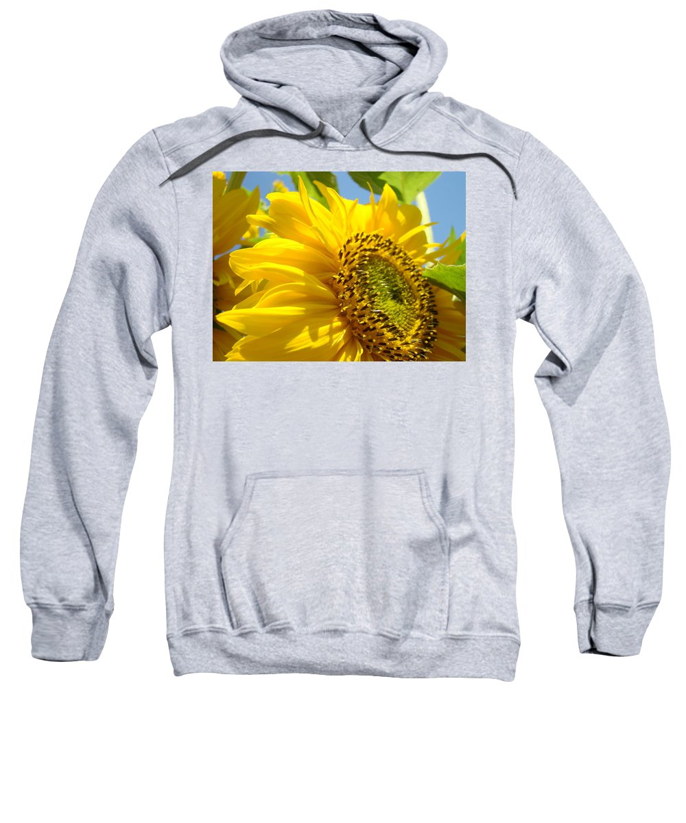 Sunflower Sweatshirt featuring the photograph Sunflowers Art Prints Sun Flower Giclee Prints Baslee Troutman by Baslee Troutman