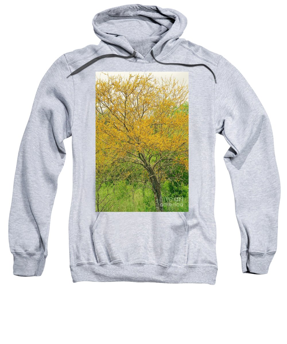 Leaning Sweatshirt featuring the photograph The Leaning Tree by Gary Richards