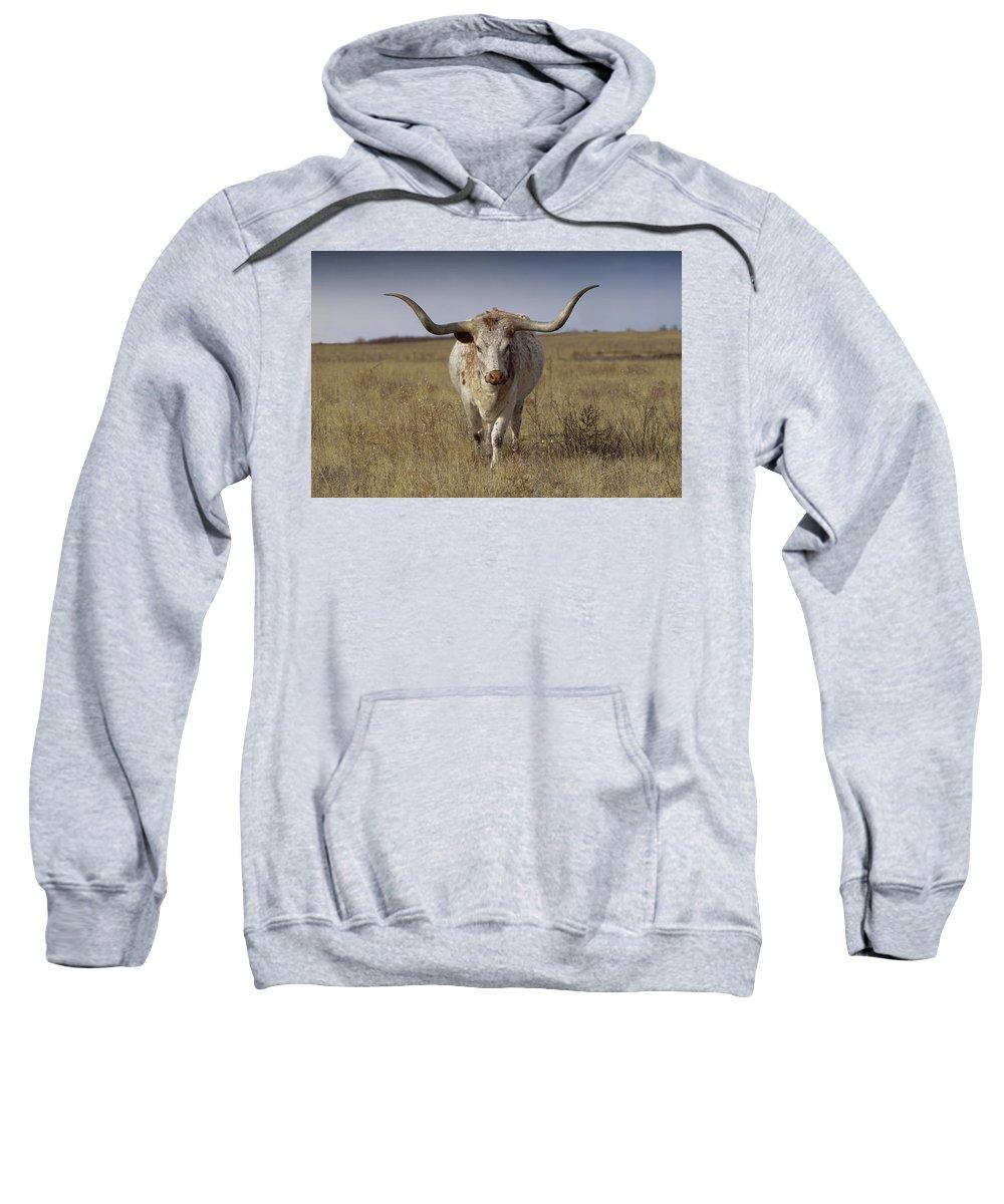 Longhorn Sweatshirt featuring the photograph The Longhorn by Ernie Echols