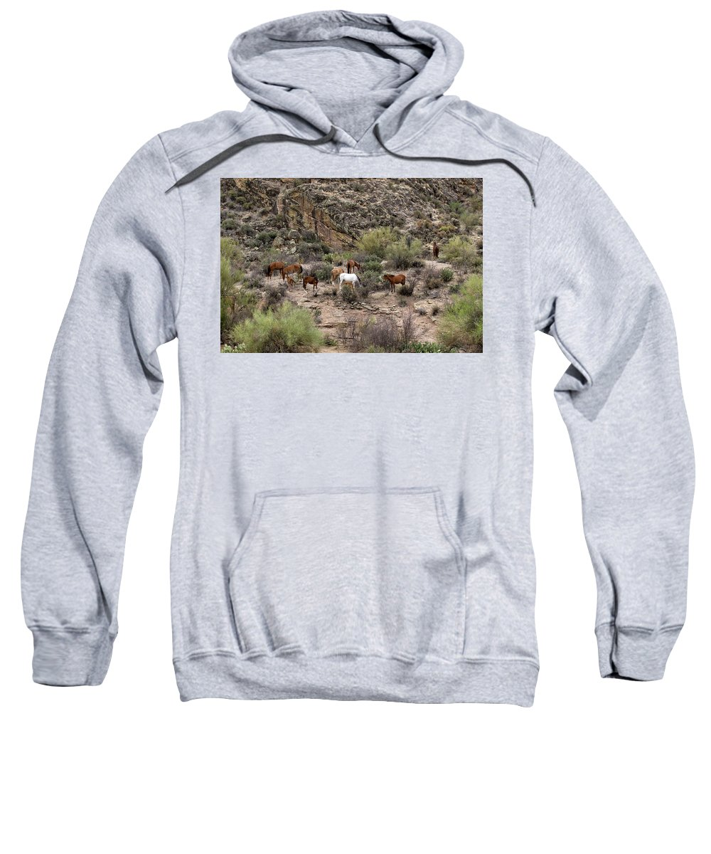 Arizona Sweatshirt featuring the photograph The Wild One's by Cathy Franklin
