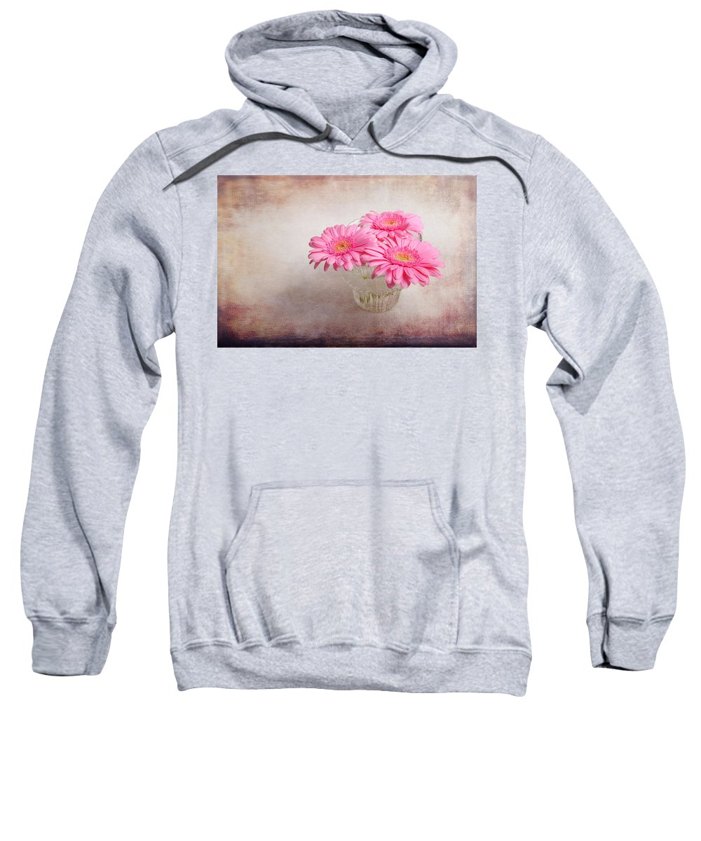 Textures Sweatshirt featuring the photograph Three Of Us by Randi Grace Nilsberg