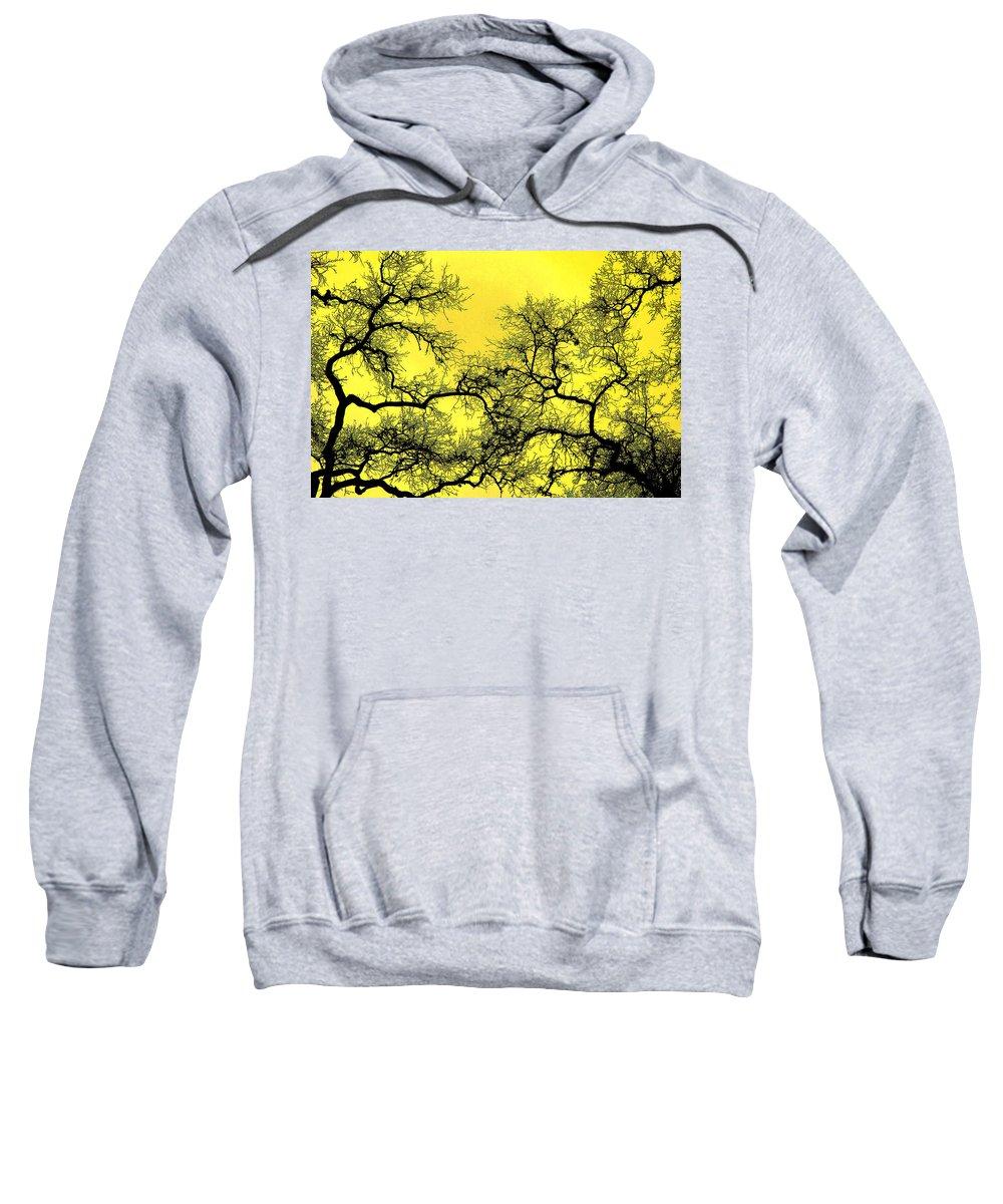 Digital Art Sweatshirt featuring the photograph Tree Fantasy 18 by Lee Santa