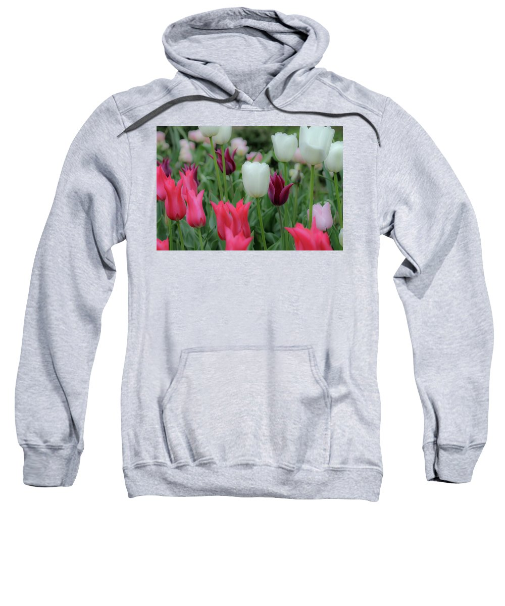 Tulips Sweatshirt featuring the painting Tulips by Eric Barnes