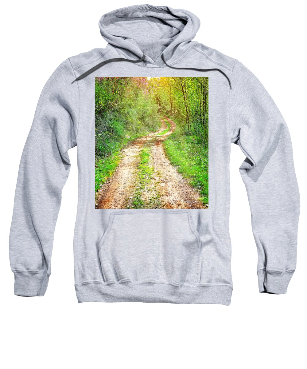Beauty Sweatshirt featuring the photograph Walkway In Secluded Deciduous Forest by Anna Om