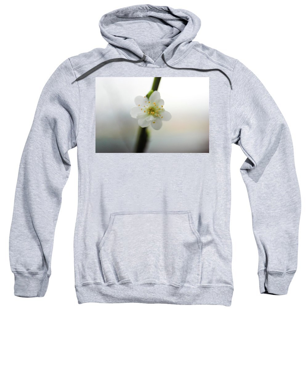 Sweatshirt featuring the photograph Awakening Of The Spring by Vesna Grgurevic