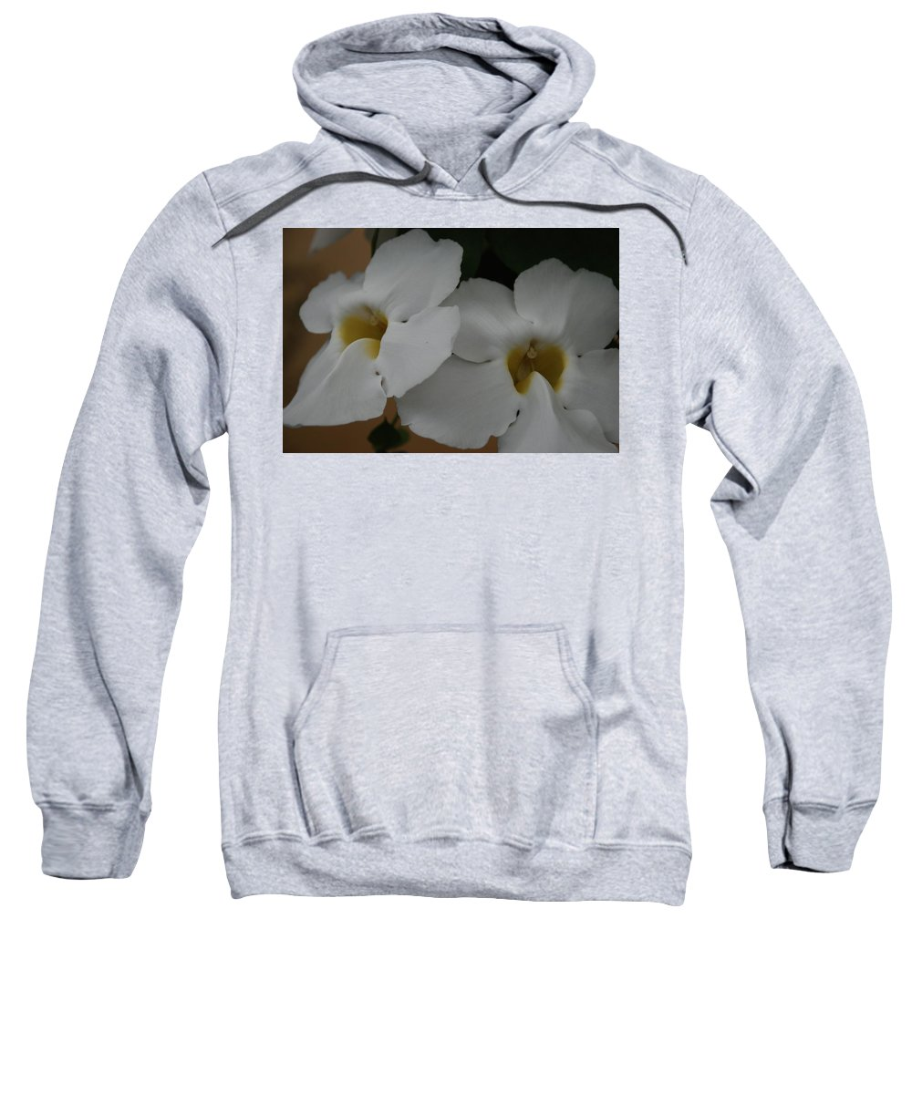 Macro Sweatshirt featuring the photograph White Orchids by Rob Hans