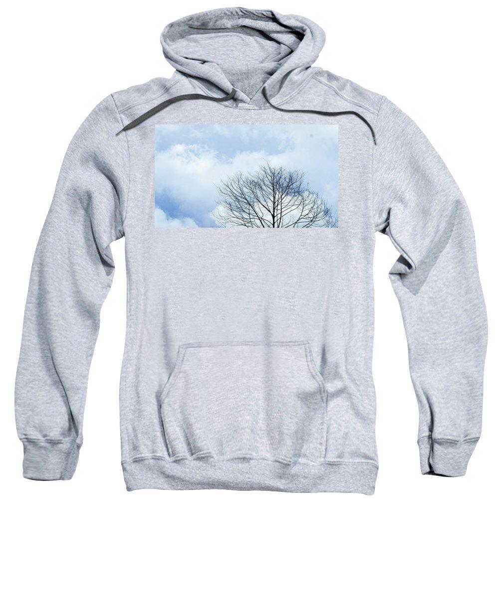 Winter Sky Hooded Sweatshirts T-Shirts