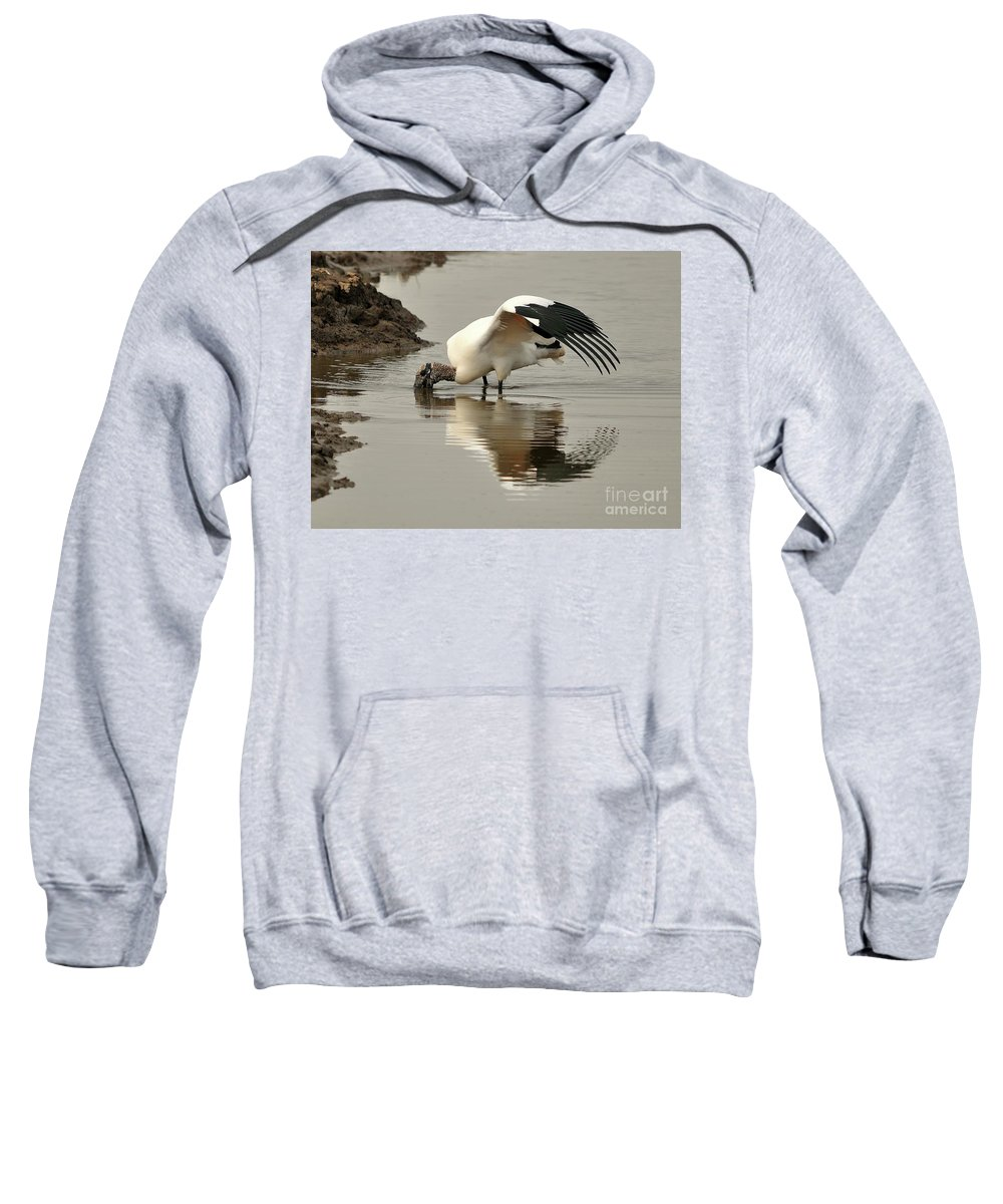 Wood Stork Sweatshirt featuring the photograph Wood Stork Winging It by Al Powell Photography USA