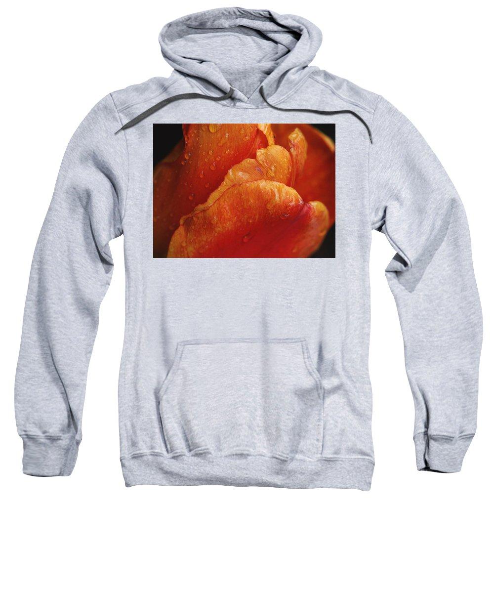 Flower Sweatshirt featuring the digital art Flower by Bert Mailer