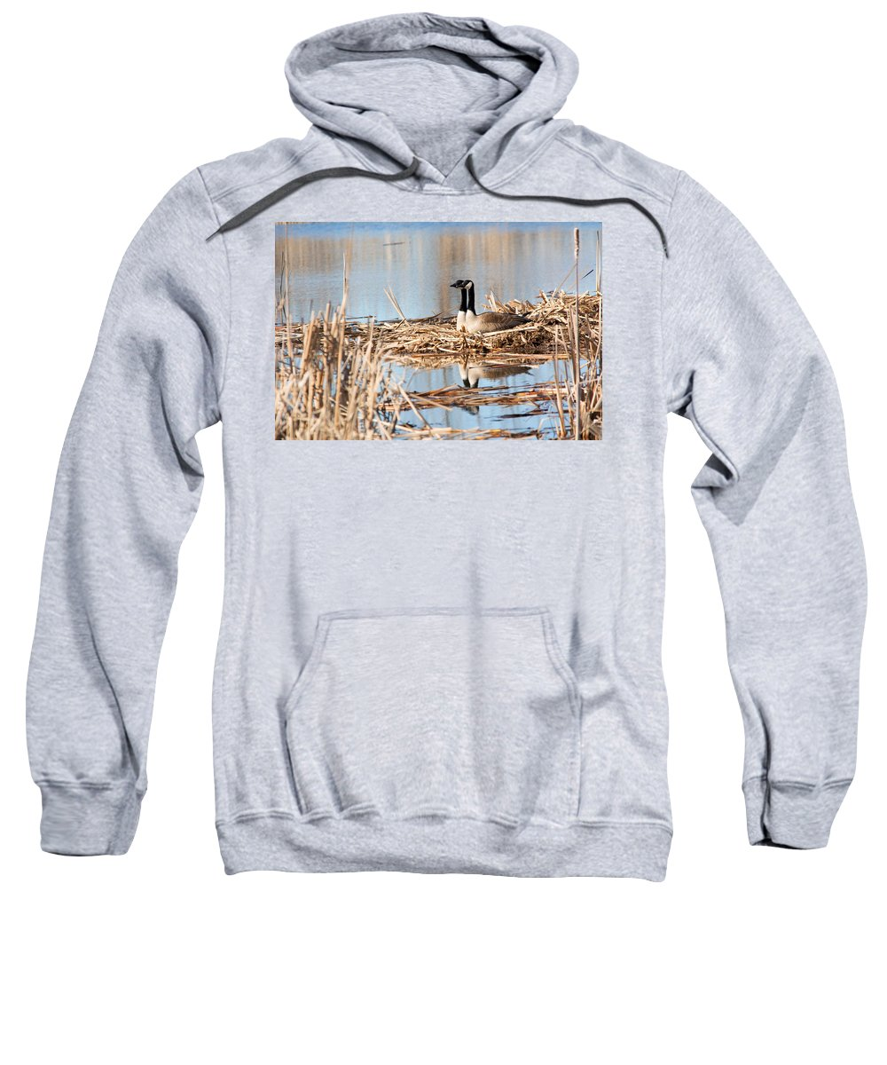 Canadian Geese Sweatshirt featuring the photograph A Pair by Linda Kerkau