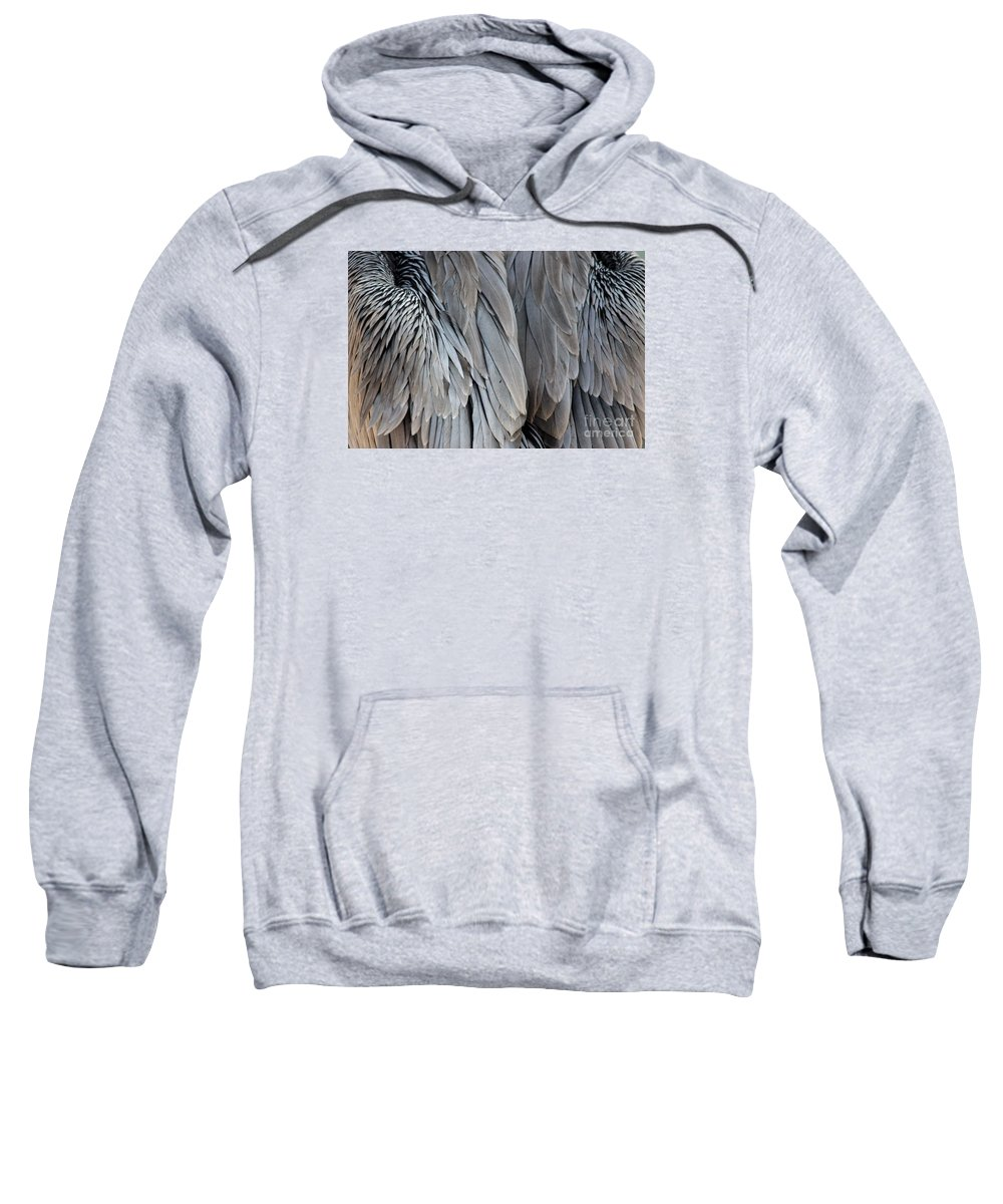 Pelican Sweatshirt featuring the photograph Angel Wings by Paulette Thomas