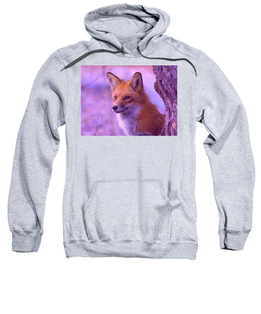 Fox Sweatshirt featuring the digital art Fox by Bert Mailer