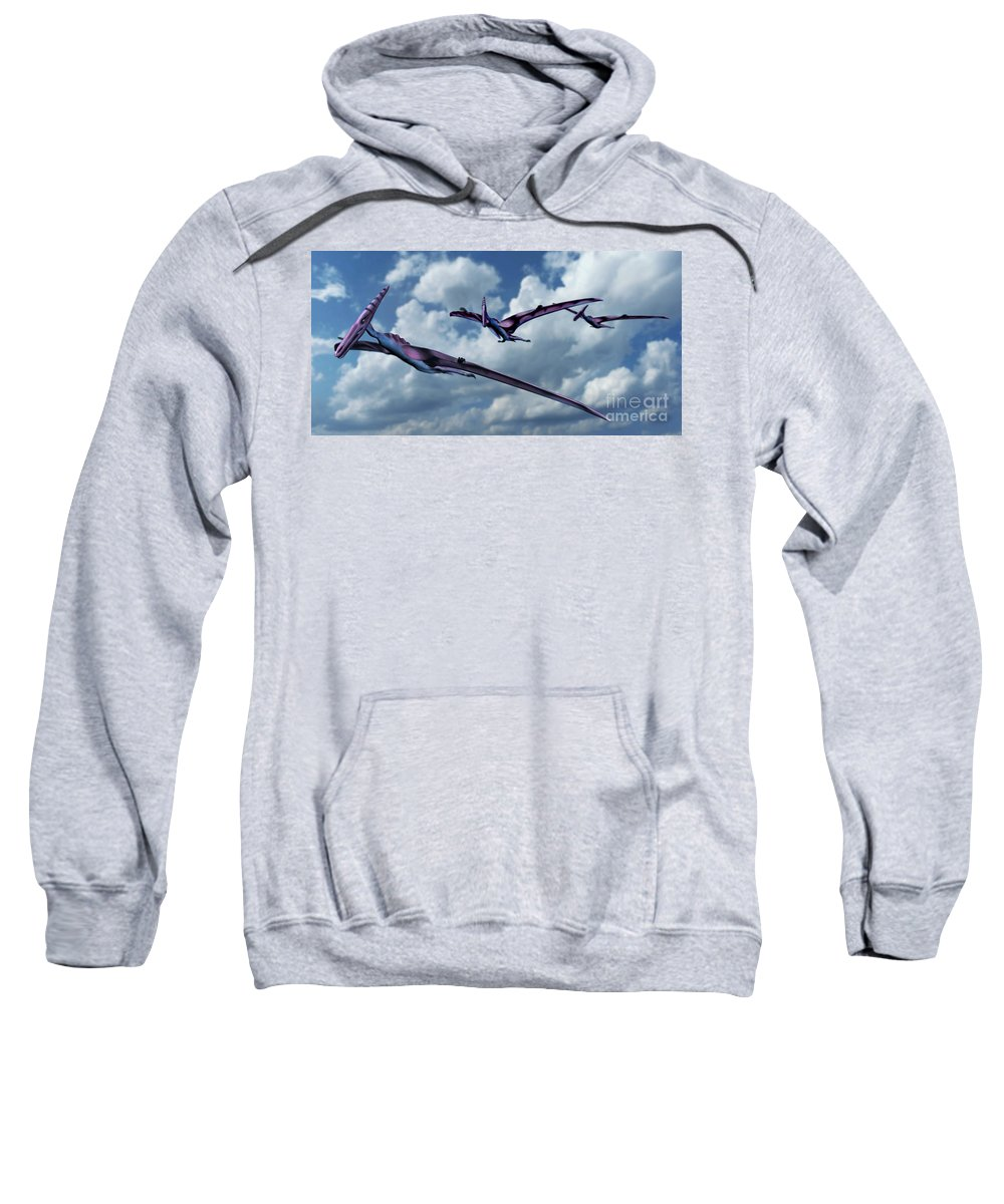 Pterodactyl Sweatshirt featuring the photograph Pterodactyls In Flight by Spencer Sutton