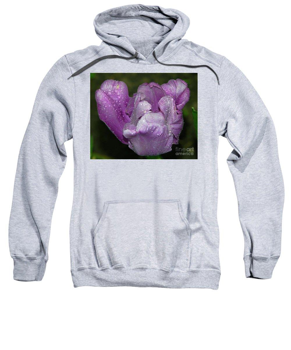 Flowers Sweatshirt featuring the photograph Purple Tulip by Elvira Ladocki