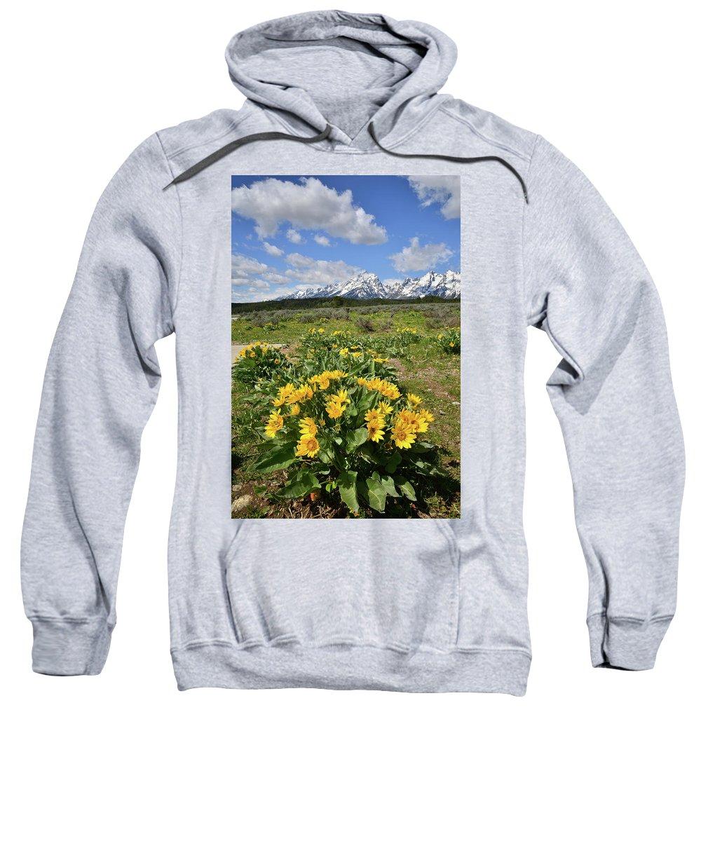 Grand Teton National Park Sweatshirt featuring the photograph Teton Balsam Root by Ray Mathis