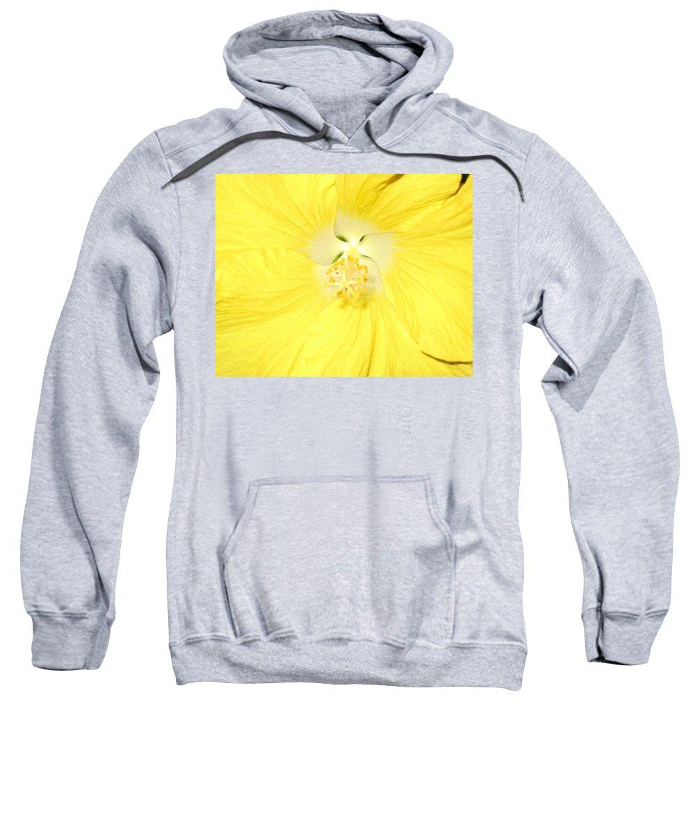 Flower Sweatshirt featuring the photograph Yellow Hibiscus by Debbie Levene