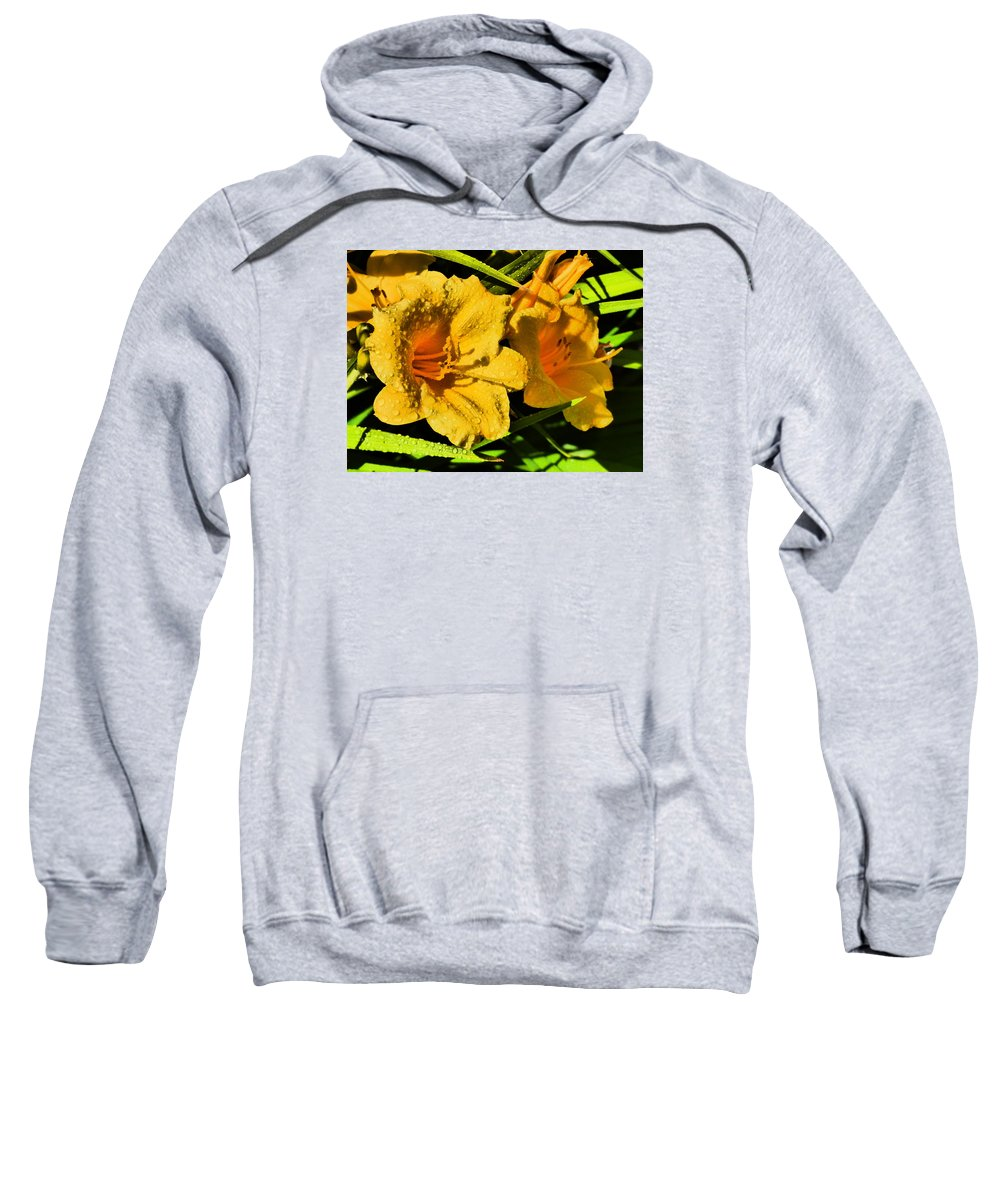 Flower Garden Idaho Photography Sweatshirt featuring the photograph Real Real Gone by Paul Stanner