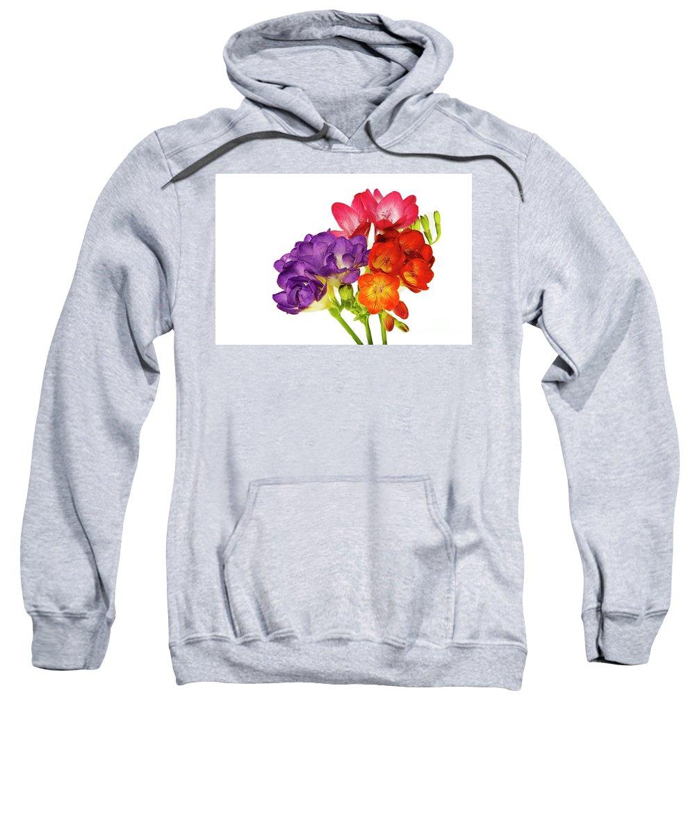 Flowers Sweatshirt featuring the photograph Colorful Freesias by Elvira Ladocki