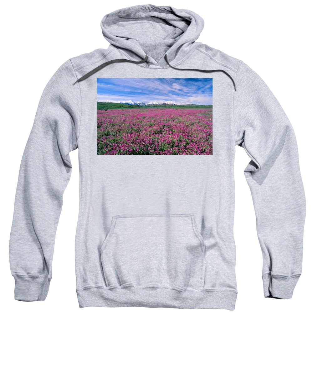 Bloom Sweatshirt featuring the photograph Denali National Park by John Hyde - Printscapes