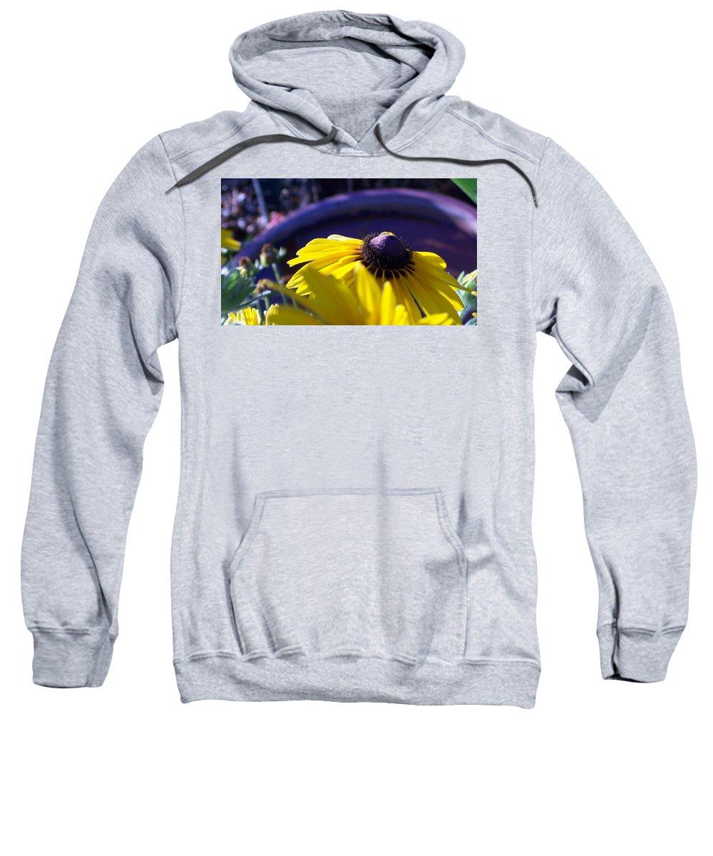 Sundaisy Sweatshirt featuring the photograph Sun Glory Series by Marika Evanson