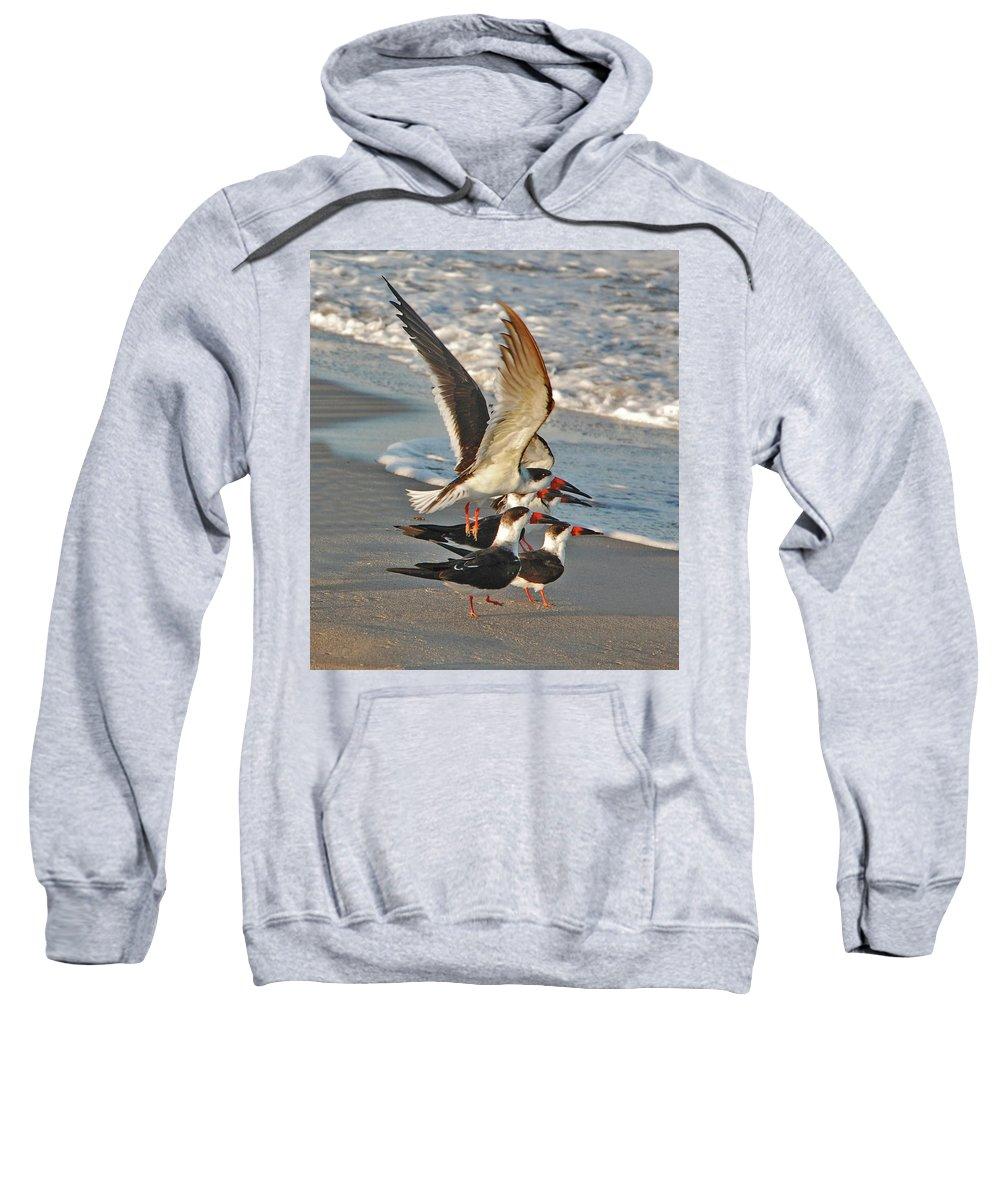 Black Skimmers Sweatshirt featuring the photograph 3- Upward And Onward by Joseph Keane