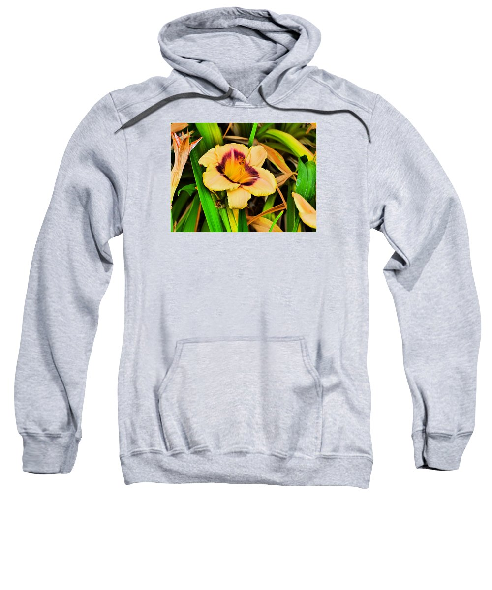 Flower Garden Idaho Photography Sweatshirt featuring the photograph Still by Paul Stanner