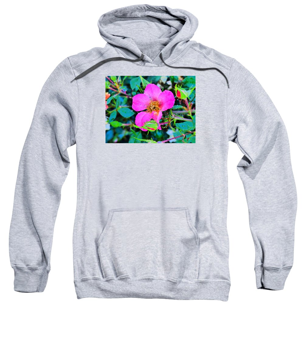 Flowers Garden Idaho Photography Sweatshirt featuring the photograph Downtown Train by Paul Stanner