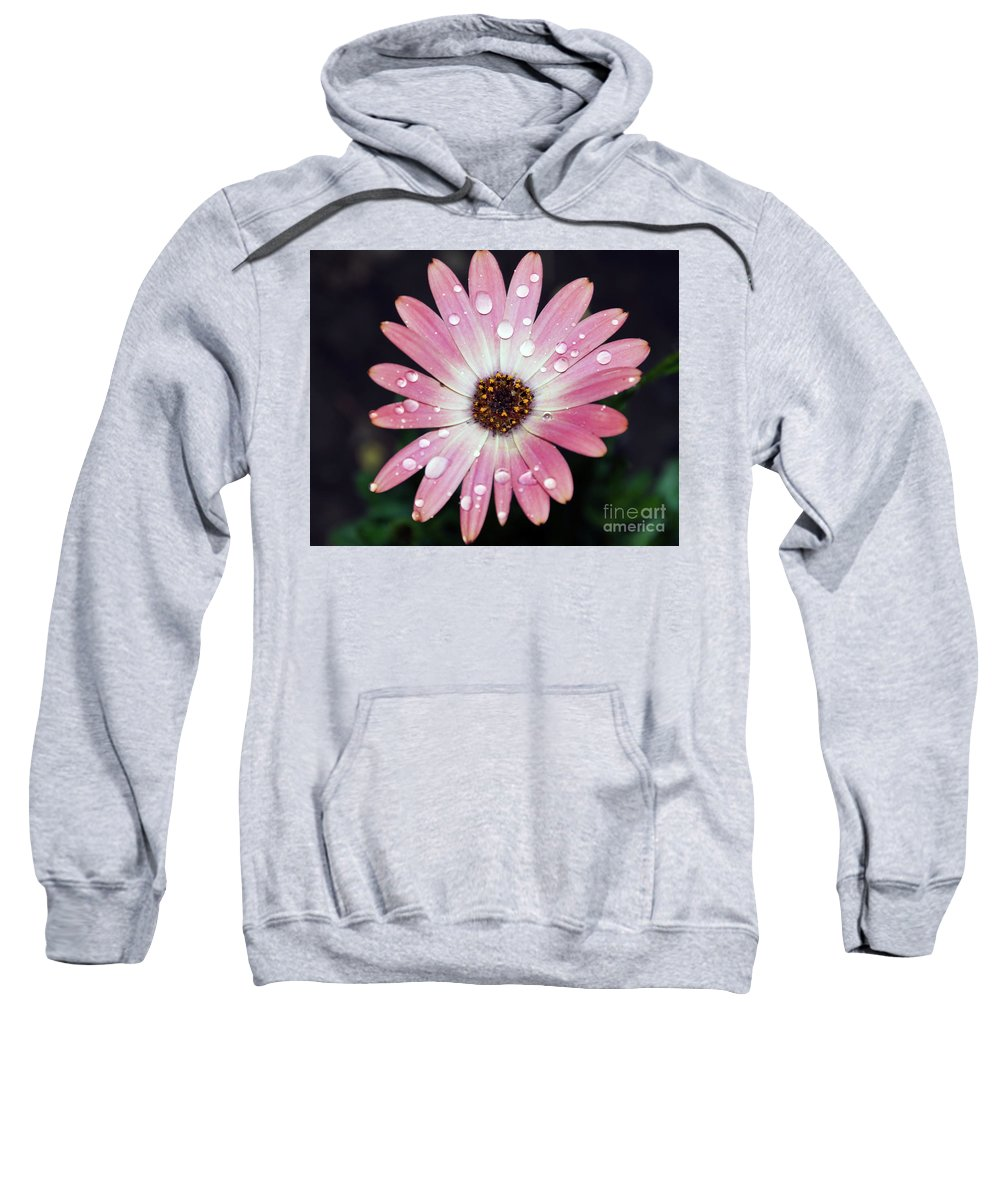 Flowers Sweatshirt featuring the photograph Pink Flower by Elvira Ladocki