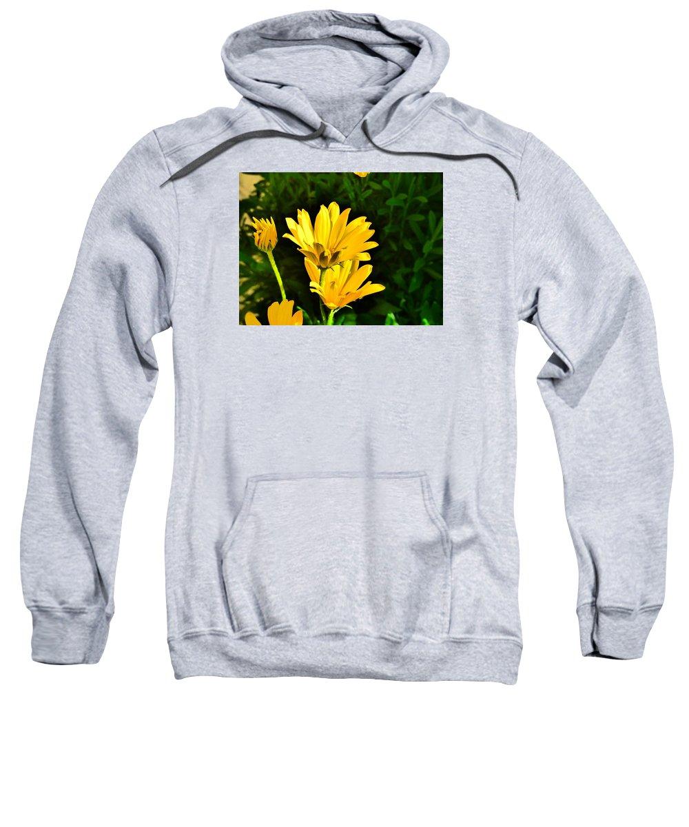 Flower Garden Idaho Photography Sweatshirt featuring the photograph Elle Est Jolie by Paul Stanner