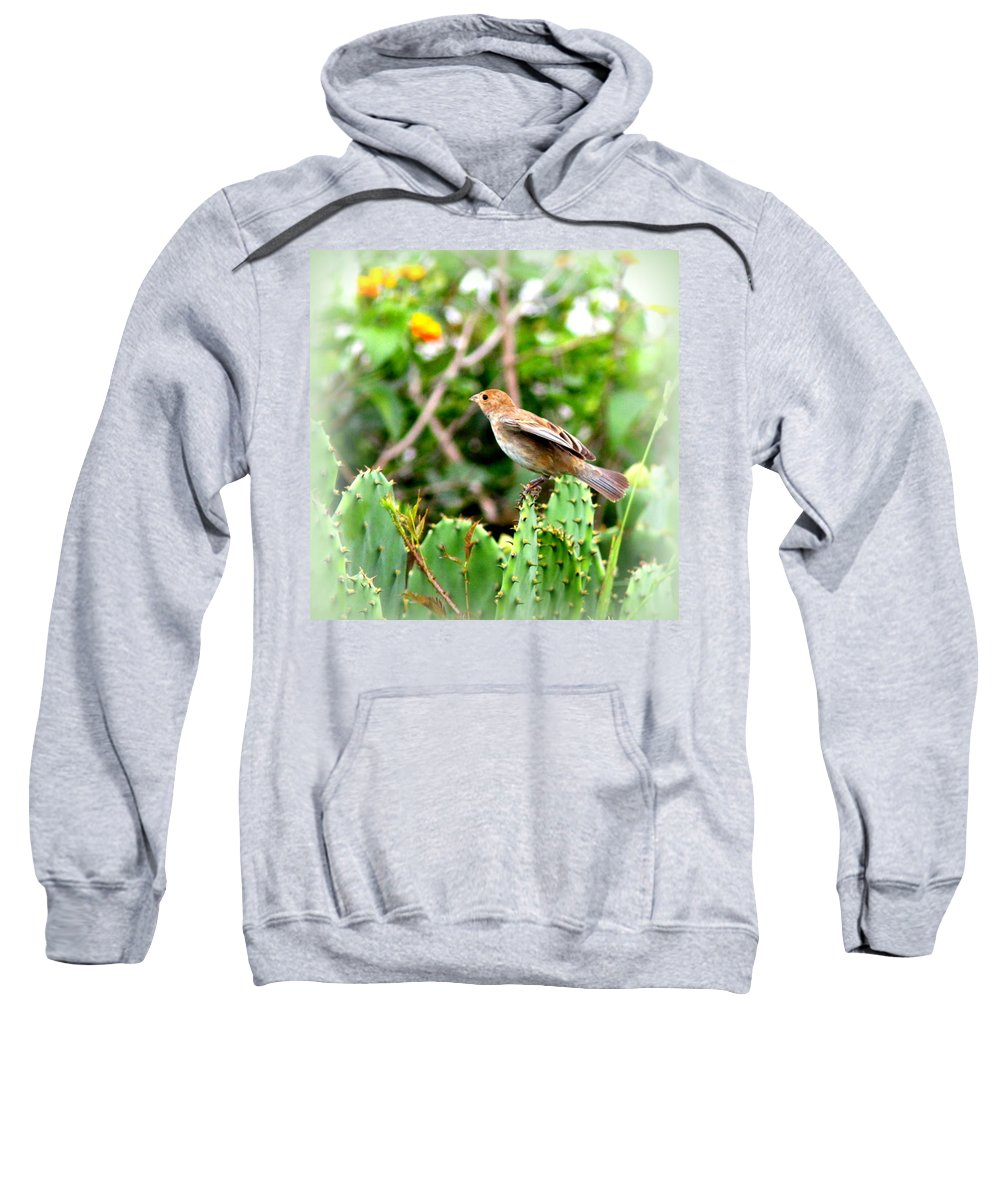 Tanager Sweatshirt featuring the photograph 3546 - Tanager by Travis Truelove