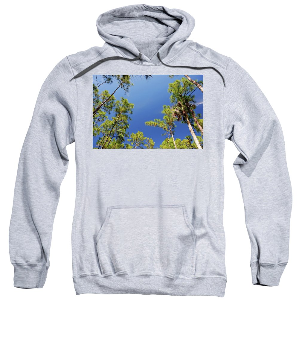 Cypress Trees Sweatshirt featuring the photograph 4- Cypress Trees by Joseph Keane