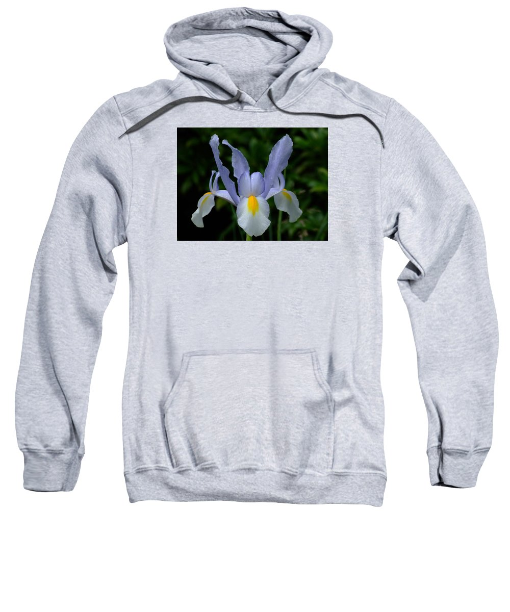 Flower Sweatshirt featuring the photograph Flowers by FL collection