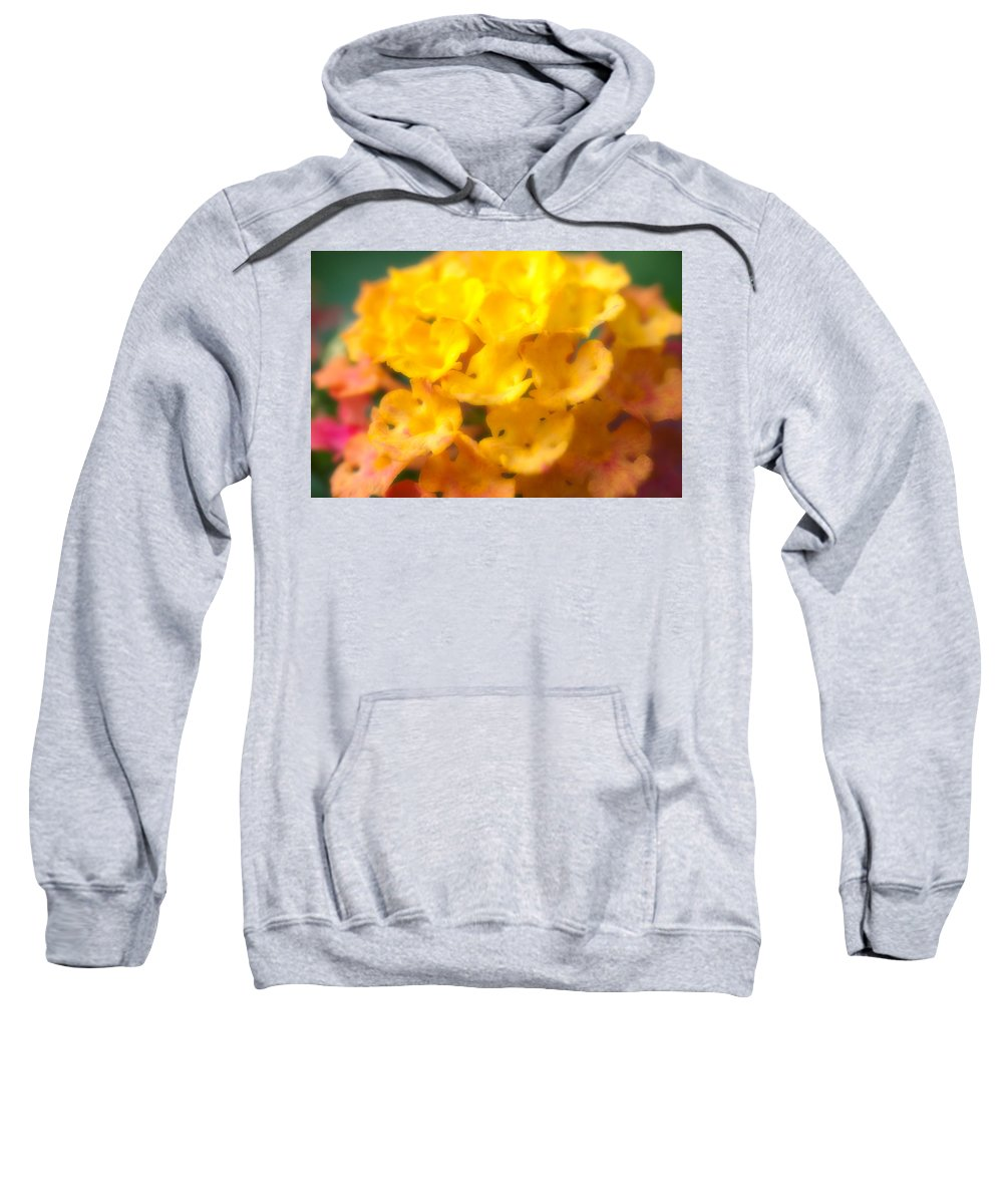 Flower Sweatshirt featuring the photograph Flower by Sebastian Musial