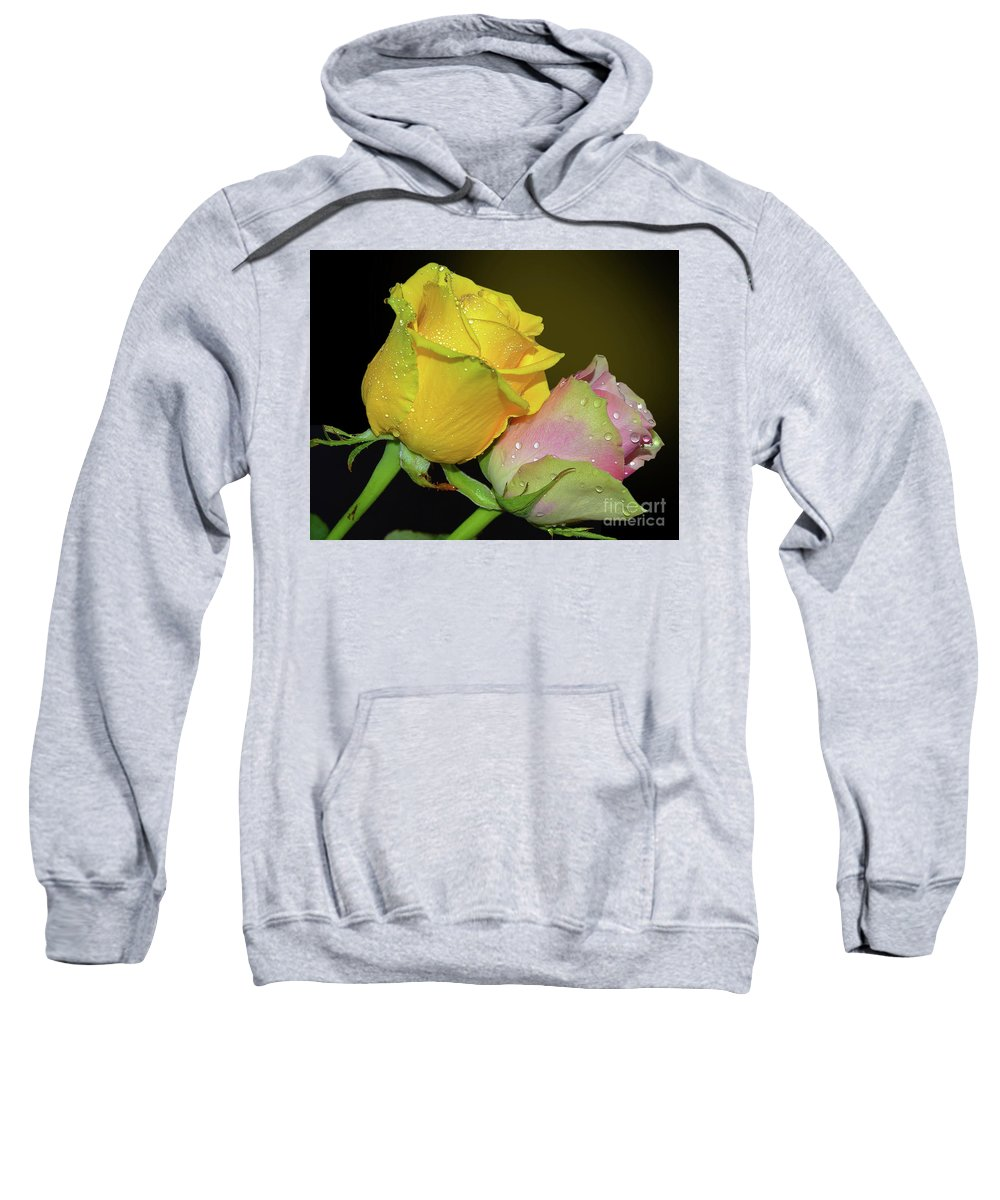 Flowers Sweatshirt featuring the photograph Two Roses by Elvira Ladocki
