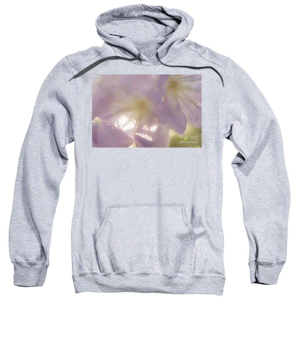 Purple Sweatshirt featuring the photograph Pastel Purple Flowers by Michelle Himes