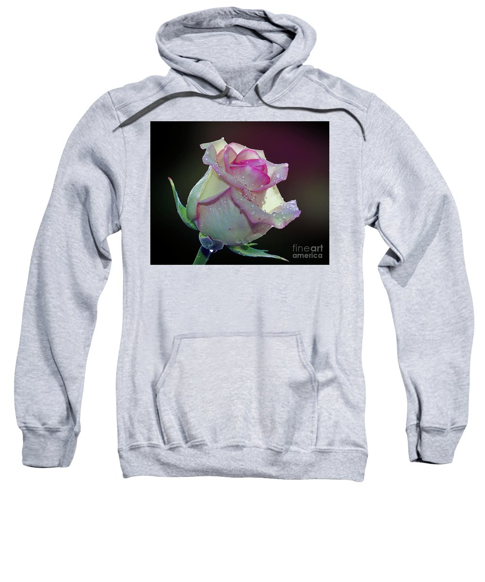 Flowers Sweatshirt featuring the photograph Nice Rose by Elvira Ladocki