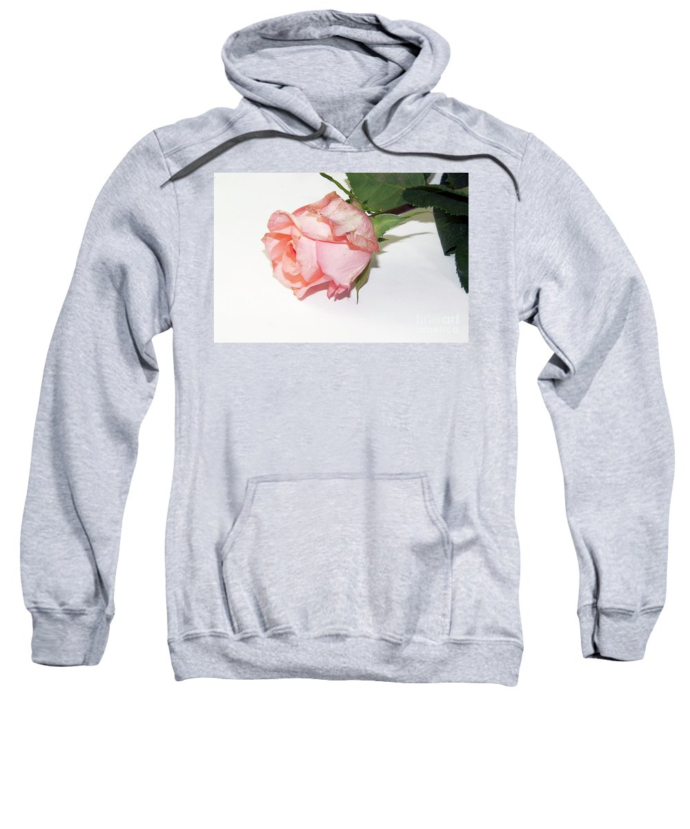 Flowers Sweatshirt featuring the photograph Pink Rose by Elvira Ladocki