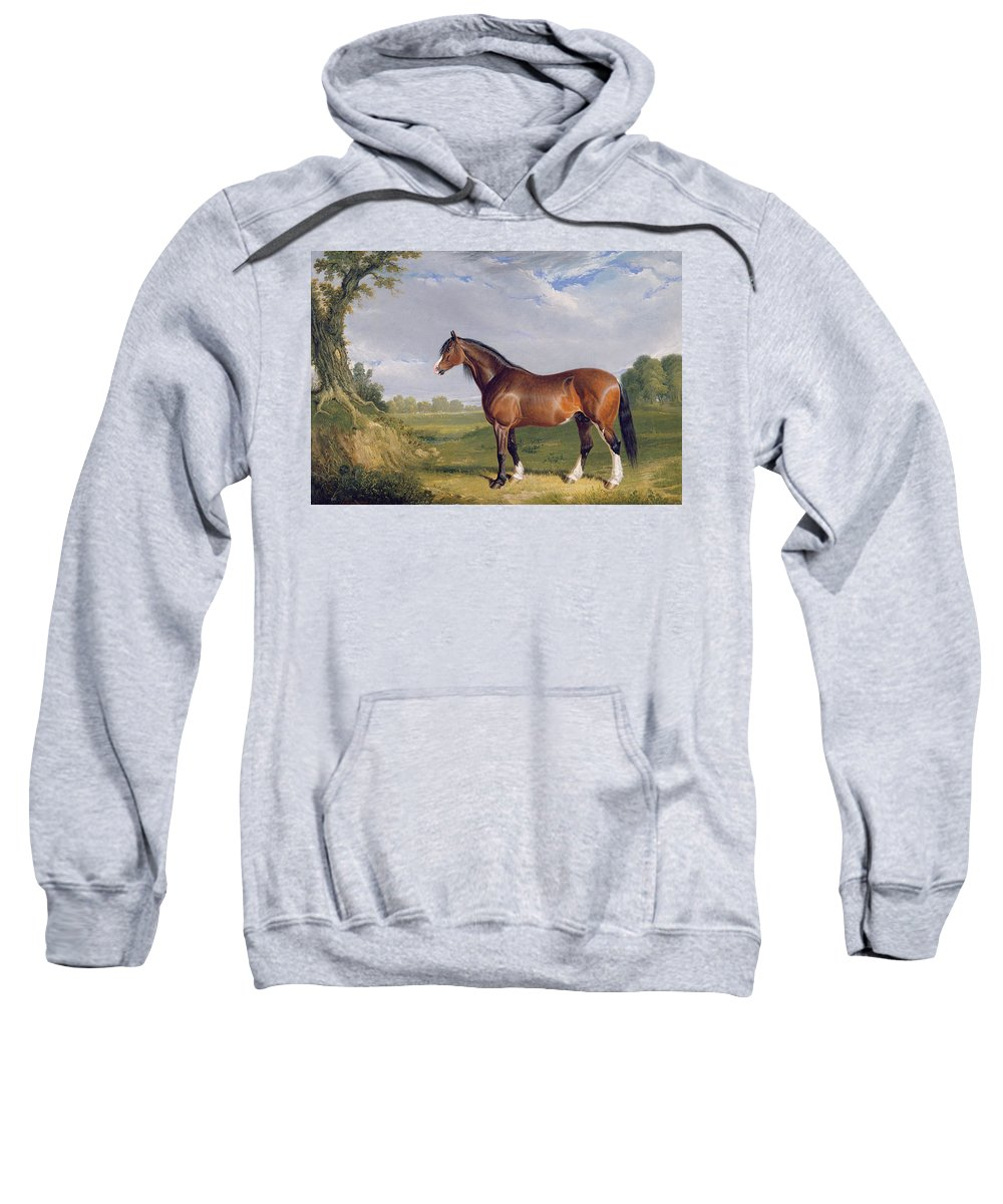 Xyc265055 Sweatshirt featuring the photograph A Clydesdale Stallion by John Frederick Herring Snr