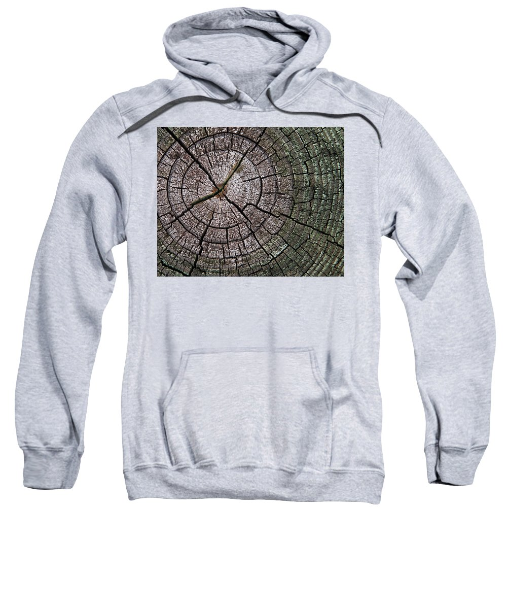 Tree Sweatshirt featuring the photograph A Cut Above - Patterns Of A Tree Trunk Sliced Across by Mitch Spence