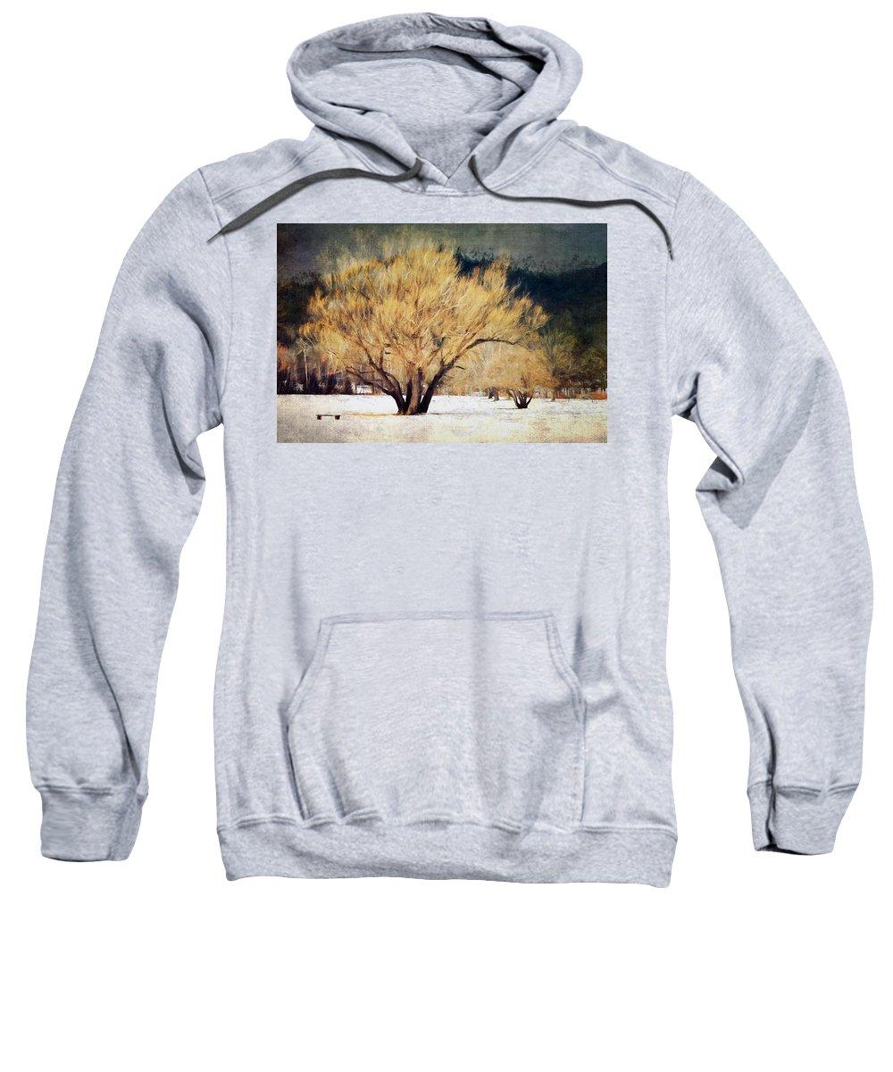 Winter Sweatshirt featuring the photograph A Forgotten Winter by Tina Baxter