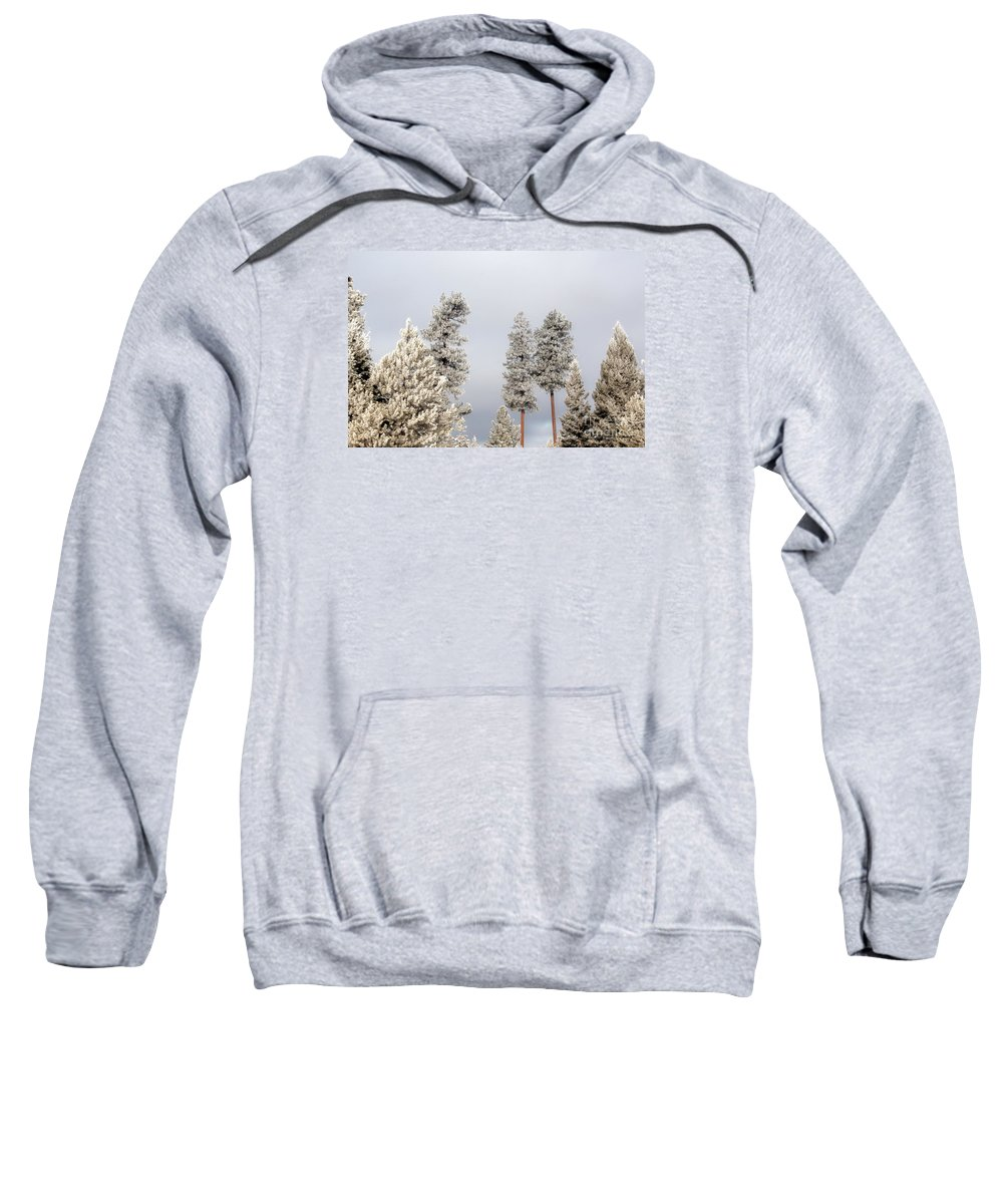 Hdr Sweatshirt featuring the photograph A Frosty Morning 2 by Janie Johnson