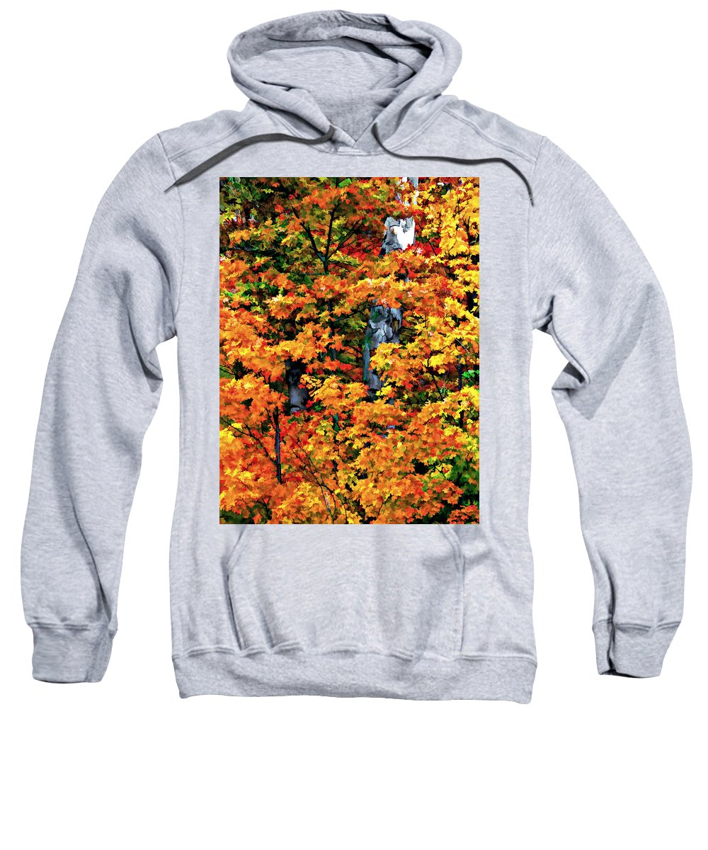 Trees Sweatshirt featuring the photograph A Giant Passes by Steve Harrington