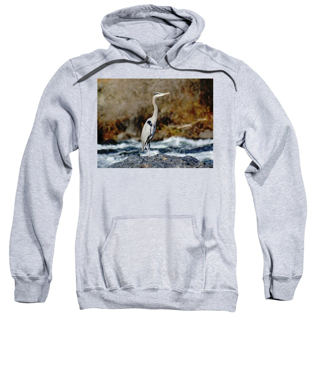 Birds Sweatshirt featuring the photograph A Great Blue Heron At The Spokane River 2 by Ben Upham III