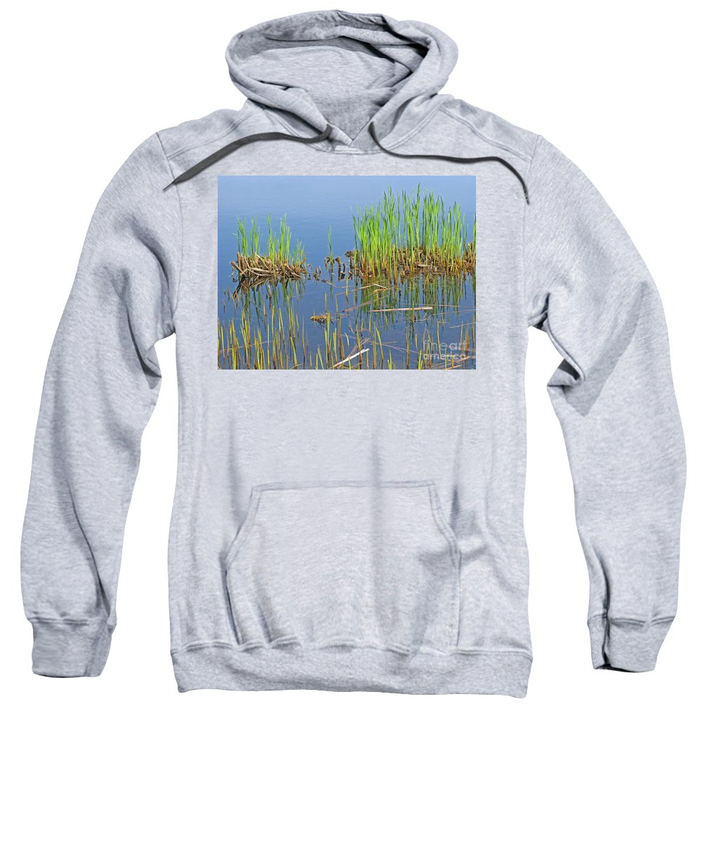 Spring Sweatshirt featuring the photograph A Greening Marshland by Ann Horn