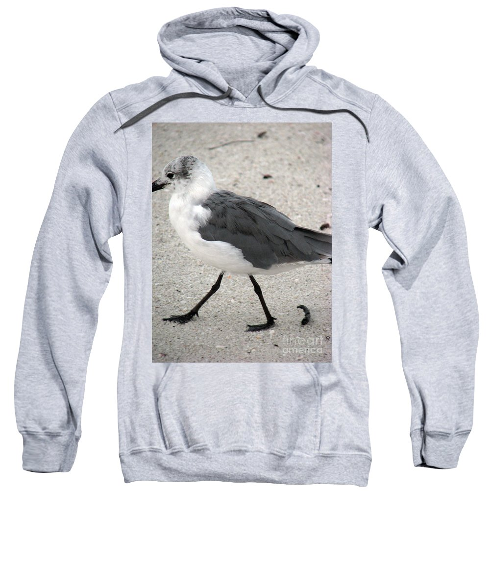 Seagulls Sweatshirt featuring the photograph A Late Summer Walk by Amanda Barcon