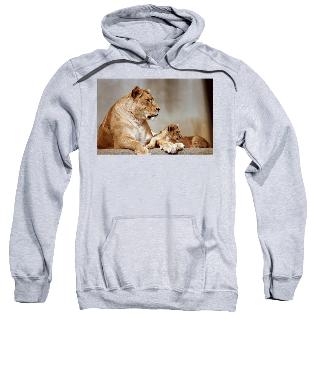 Lion Sweatshirt featuring the photograph A Lioness And Cub by Gary Adkins