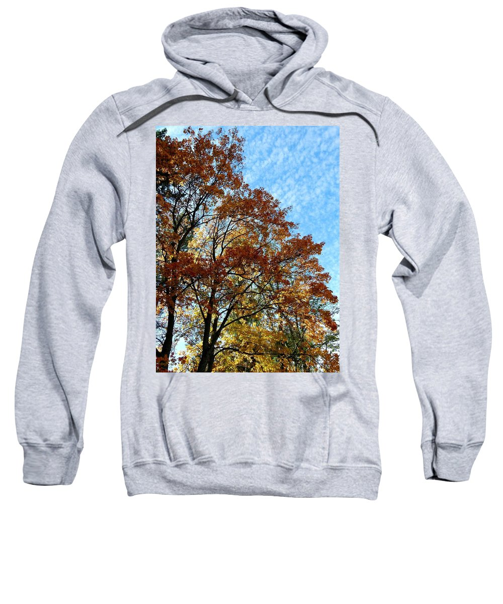 Autumn Sweatshirt featuring the photograph A Magnificent Fall Day by Will Borden