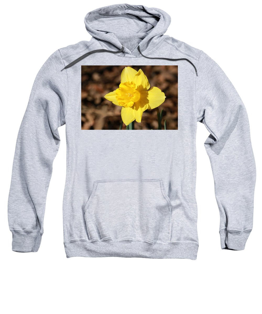 Nature Sweatshirt featuring the photograph A Spring Blessing by Sheila Brown
